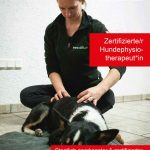 Zertifizierter Hundephysiotherapeut