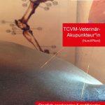 Zertifizierter_TCVM-Akupunkteur