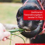Ausbildung zum zertifizierten Tierernährungsfachberater Pferd